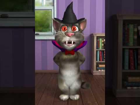 Talking tom cat Trolling Pathan | Talking tom cat funny videos in Punabi & Hindi & Urdu
