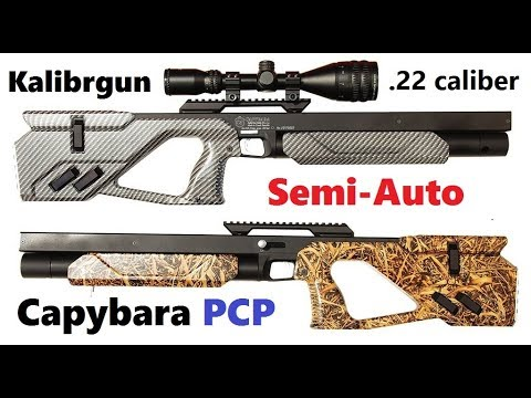 Kalibrgun CAPYBARA Semi-Auto PCP Rifle (.22 caliber) 2018 Best Air Rifle Review