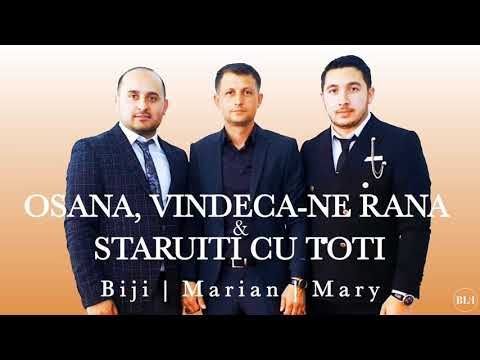 Fratii din Barbulesti - Osana, vindeca-ne rana & Staruiti cu toti (Official Video 2019)