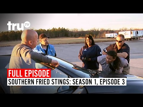 Southern Fried Stings | Season 1, Episode 3 | Watch The Full Episode | TruTV