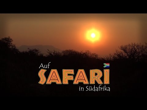 Auf Safari in Südafrika (1/3) [Reportage / Doku / Dokumentation Deutsch]
