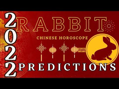 2022 Rabbit Horoscope Prediction   2022 Rabbit Chinese Zodiac Sign Luck Prediction