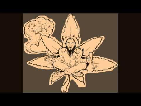 Spliff Vision- Crashing Down