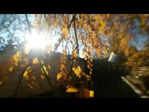 Autumn nature (Осенняя природа)