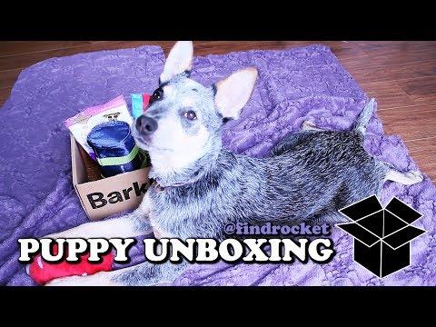 Puppy Unboxing #8 - BarkBox Travel Toys