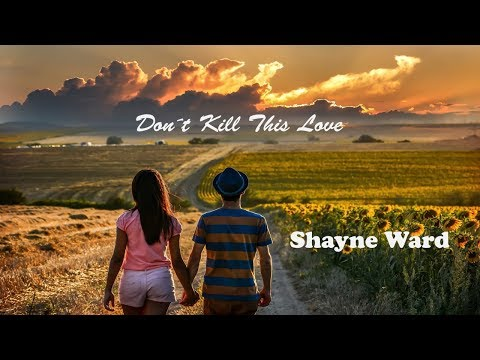 Don´t Kill This Love - Shayne Ward tradução