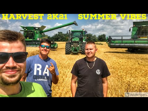 Harvest 2021 in Slovakia | Best Moments | Summer Vibes