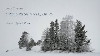 Sibelius: 5 Piano Pieces (The Trees), Op. 75 (1914)