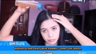SPOTLITE Trans 7 - Bahan Alami Penyubur Rambut yang Tak Biasa