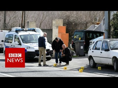 France hostage disaster: Police shoot grocery store gunman – BBC Information