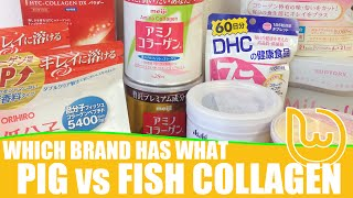 Which Brand Has What Pig vs Fish Collagen