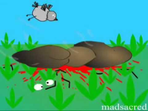 Лаэртский хуй гавно и муравей