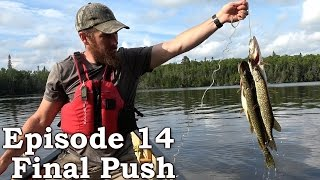 Catch and Cook CATFISH Survival Tactics | The Wilderness Living Challenge 2016 S01E14 - FINAL PUSH Video