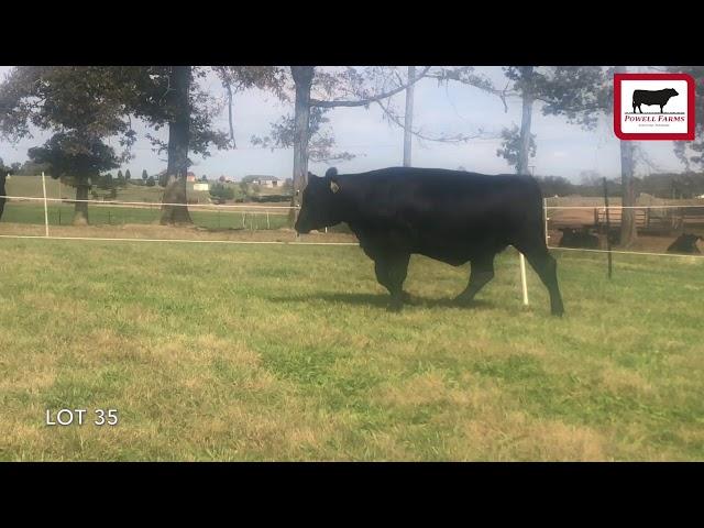 Powell Farms Lot 35