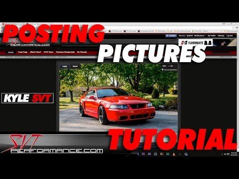 How To Post Pictures on Online Forums