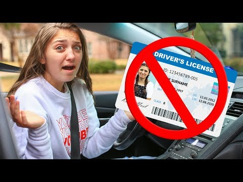 I Didn't Get My License...