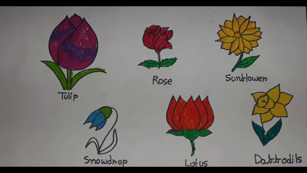 How To Draw And Colouring Flowers For Kids Learn Flower Names In English School Project Youtube