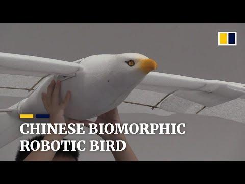 Empresa chinesa cria pássaro robô super-realista