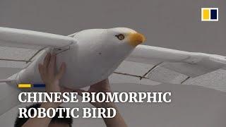 Chinese biomorphic robotic bird