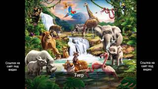 Звуки африканских животных для детей