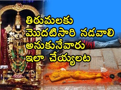 Safety Precautions While Going to Tirupati By Steps | Tirupati Steps | TTD | Sacred Places In India