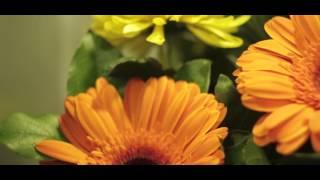 Реклама цветочного магазина(Мы в VK: www.vk.com/prodmediagroup Мы в FB: www.facebook.com/prodmediagroup Мы в Instagram: www.instagram.com/prodmedia., 2015-11-02T13:17:17.000Z)