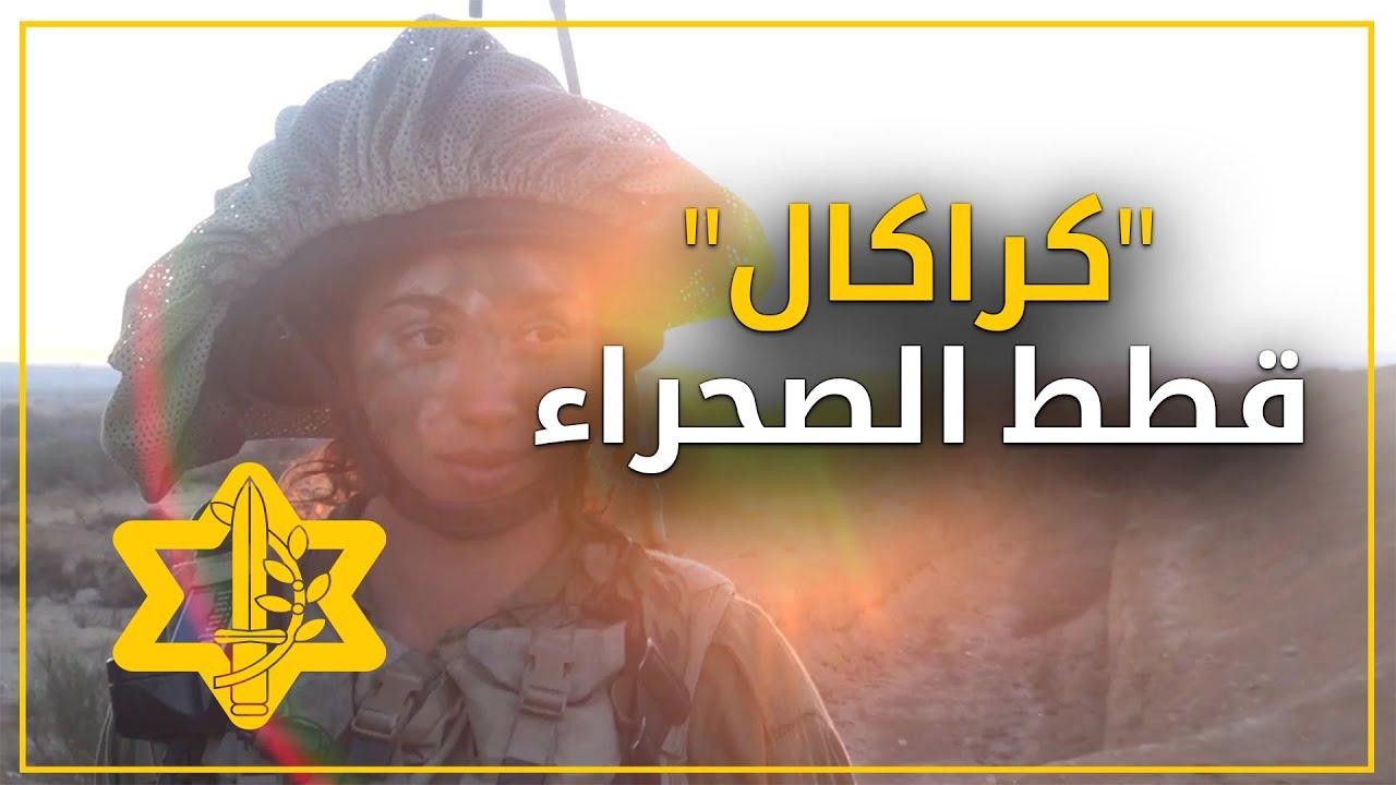 كراكال | قطط الصحراء في جيش الدفاع الاسرائيلي | أفيخاي أدرعي
