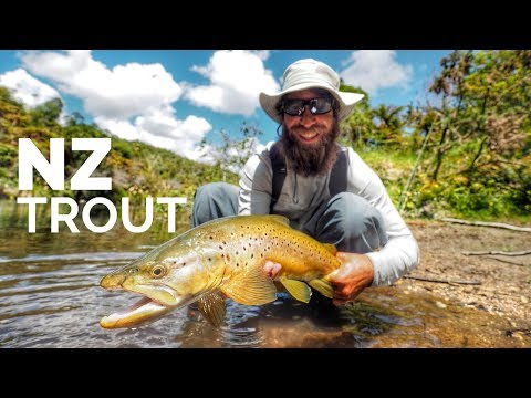 Fly Fishing New Zealand - Backcountry - Dry Flys