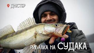 Рибалка на судака 2021 на Дністрі