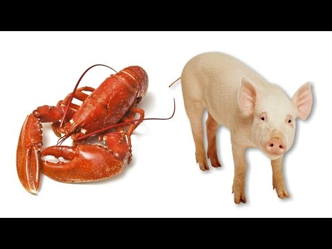 7 FACTS About UNCLEAN MEAT You Probably Didn't Know !!!