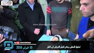 مصر العربية   استشهاد فلسطيني برصاص الجيش الإسرائيلي قرب الخليل
