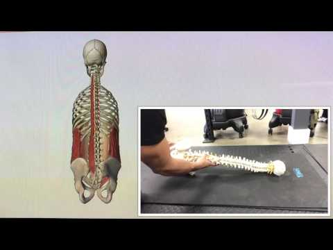 Side Line Thoracic Spine Rotation