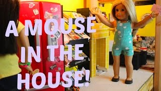 A MOUSE IN THE HOUSE! (AGSM)