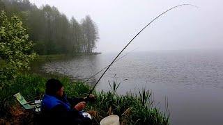 Отец Побил Свой Рекорд по Карасю Рыбалка с Ночевкой на Тетеринском Водохранилище Карась на Фидер