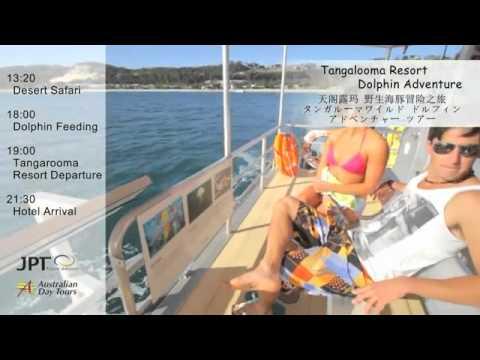Tangalooma Island Day Tour, Moreton Island, Brisbane   Experience OZ & NZ