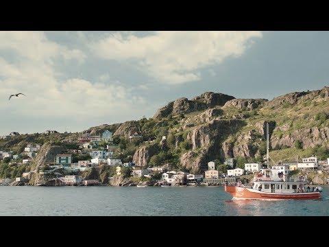 Birds & Whales, Newfoundland and Labrador