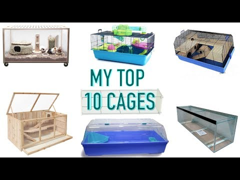 My Top 10 Hamster Cages Youtube