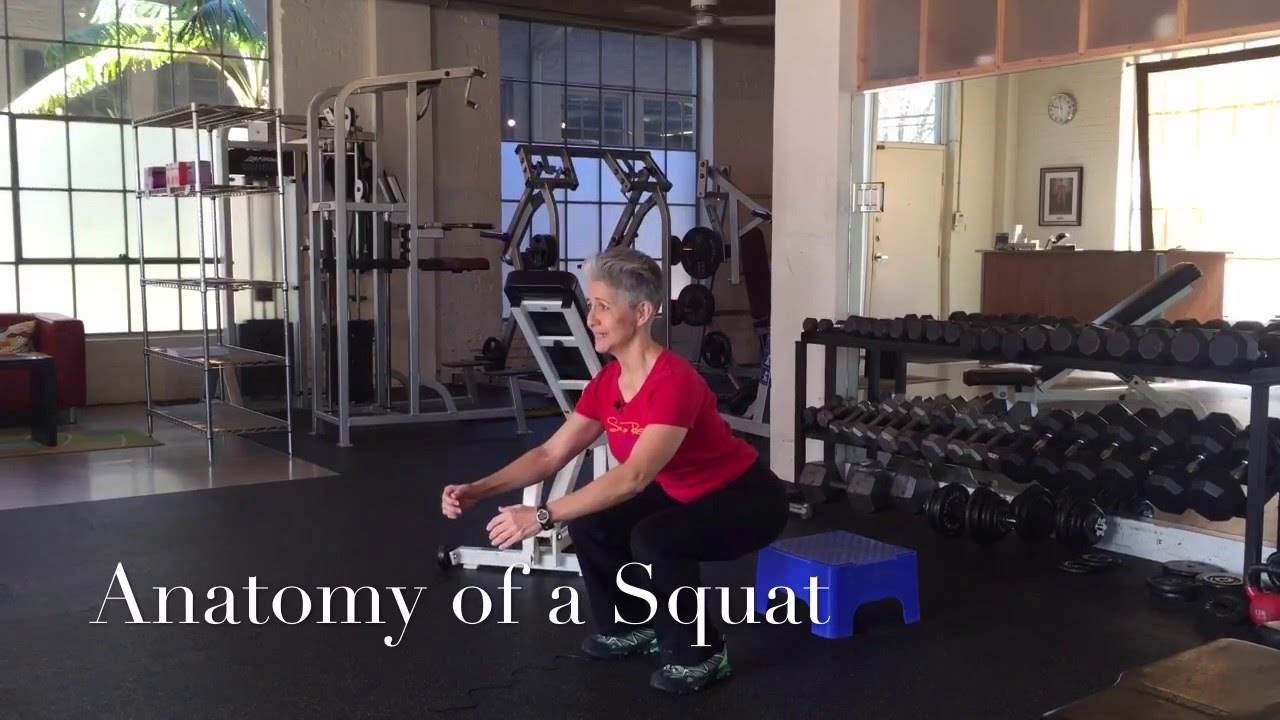 The Anatomy of a Squat - YouTube