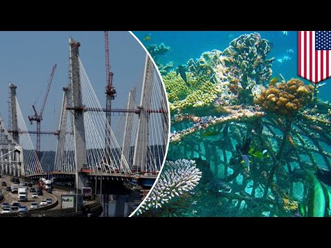Old NY bridge to be used for artificial reefs in Long Island - TomoNews