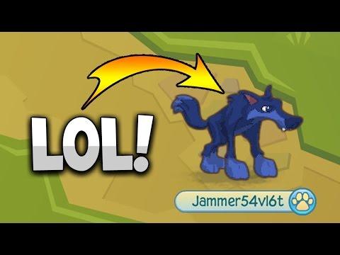 ANIMAL JAM - THE RETURN!