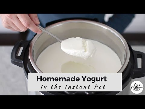 How To Make Homemade Yogurt in the Instant Pot