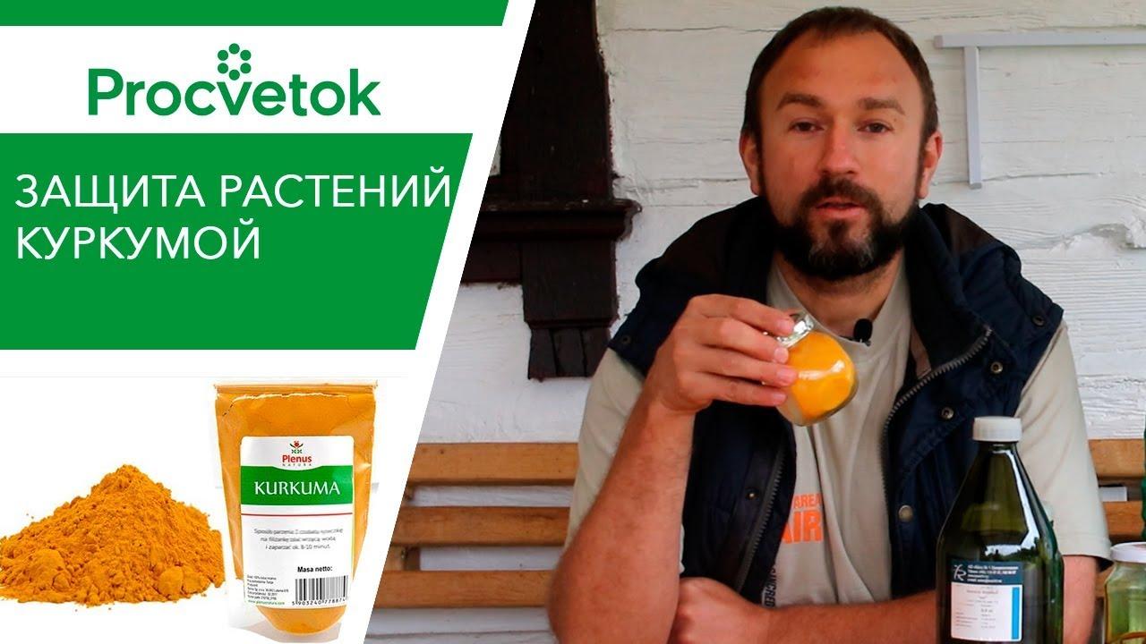 УНИКАЛЬНЫЙ экстракт для томатов и огурцов!