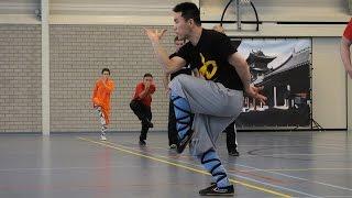 Shaolin Kung Fu Seminar - Kicks & Qi Xing Quan