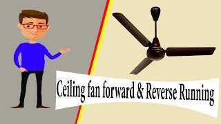 Ceiling fan forward or Reverse Running | Ceiling fan |  Earthbondhon