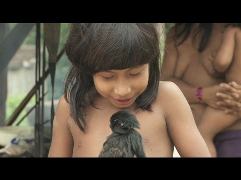 Survival International - Tribal peoples face extinction across the world