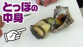 有明海で採れた貝が絶品だった!
