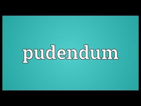Header of pudendum
