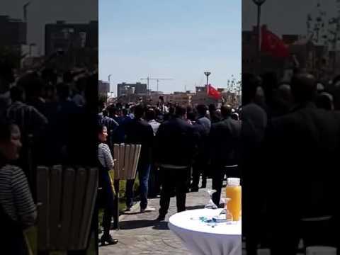 Habibas land Oran