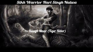 Sikh Warrior Hari Singh Nalwa | Baagh Maar (Tiger Killer) | Special Story | PTC Punjabi