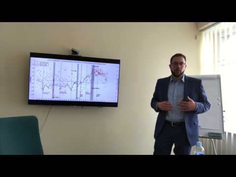 Supply and Demand Shocks in the Oil Market - PhD Thesis Presentation at the Bank of Lithuania
